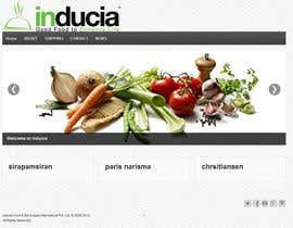 #5 para Improve inducia.com template por xtianparis