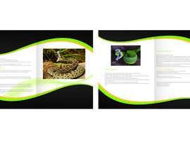 #5 for Design a Brochure by madalinarpadurar