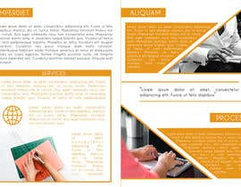 #26 za Design a Brochure - Pitch This od cdinesh008