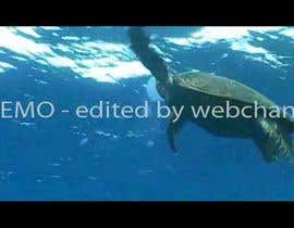 #13 for Video Editing and Blending by webchand