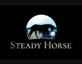 Nro 13 kilpailuun I need a intro video for my horse channel käyttäjältä briangeneral