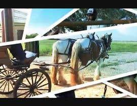 Nro 14 kilpailuun I need a intro video for my horse channel käyttäjältä briangeneral