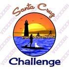 Contest Entry #80 for Illustration Surfer Sunset Santa Cruz Dog LOGO contest