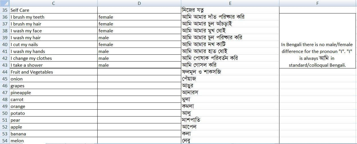 #5 for English to Bengali translation project by Hasinul