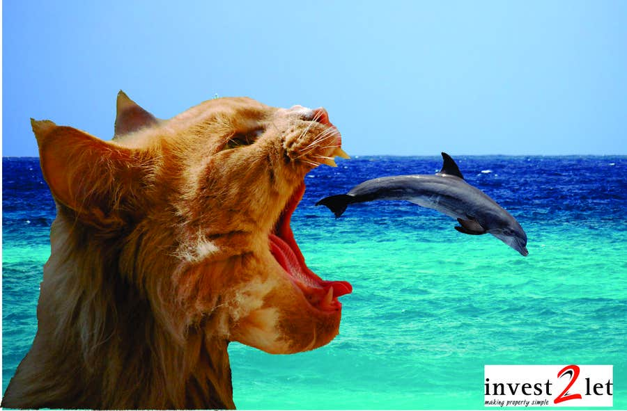 #5 for invest2let flyer design by ArtCulturZ