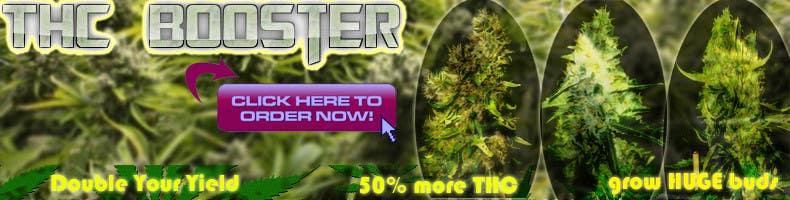 Bài tham dự cuộc thi #24 cho Design a banner for a marijuana fertilizer