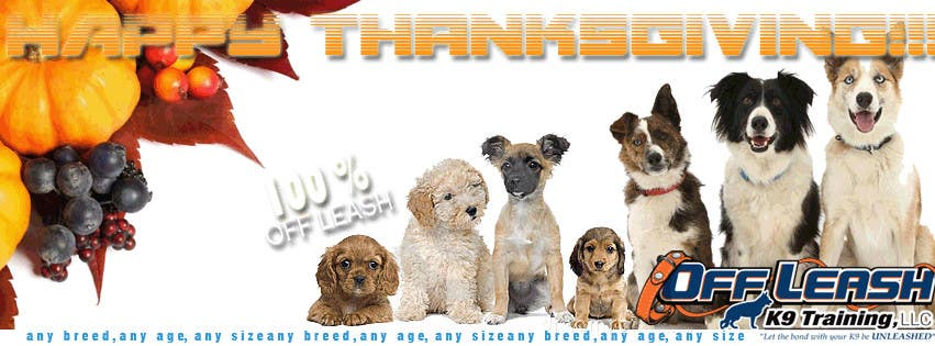 #29 for Thanksgiving Facebook Banner and Profile Pic by perlasbee