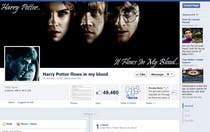 Contest Entry #7 for Need 1 Facebook Ready Fan Page.