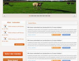#52 for Website Design for Beefs Organization af walkingassassin