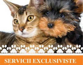 #44 for Pet Grooming Salon New Flyer Design af amcgabeykoon