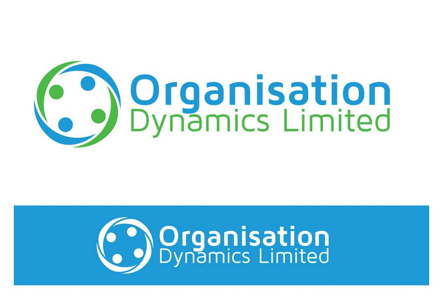 project organization dynamics