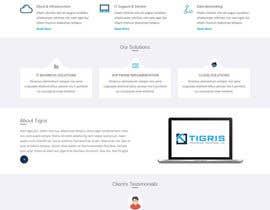 nizagen tarafından Build a Website - Network / IT Consulting Company için no 21