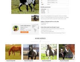 Nro 45 kilpailuun Design a horse searching website käyttäjältä JazibUllah