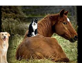 Nro 1 kilpailuun Top on the website of animals käyttäjältä mohammedzalal305