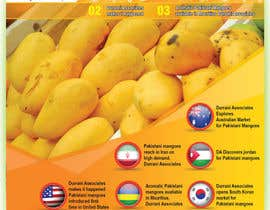 #38 cho Design a Brochure for Durrani Pak Horti Fresh Processing PVT Ltd bởi igraphicdesigner
