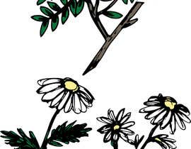 #9 para Botanical illustrations: 3 flowers for product labels por Newbeginnings29