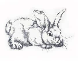 christinestrydom tarafından Draw a RABBIT for me!! için no 13