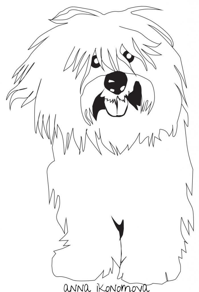 #37 for Logo / Drawing / Illustration of a dog by annaikonomova