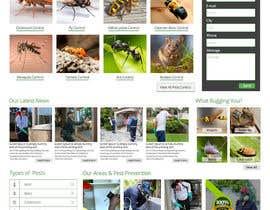 Nro 23 kilpailuun Homepage Design Mockup käyttäjältä imranwebdesigner