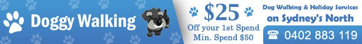 #18 for Design a Static Leaderboard Banner for Dog Walking Business by IllusionG