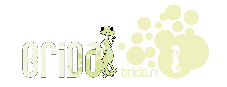 Inscrição nº 98 do Concurso para Logo Design for Brida (Gecko)