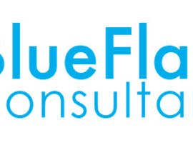 #23 for Design a Logo for Blue Flame Consultancy by NikoMDesign