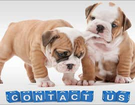 #34 for Design a Contact Us Page Image af NikolaySlavchev