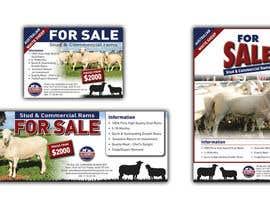karimulgraphic tarafından Design 3x Livestock/Stud Media Advertisements için no 17