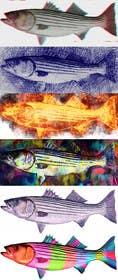 vishvjeetcheema tarafından Create fish art from photographs için no 16