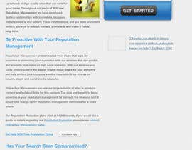 #50 para Wordpress Theme Design for Reputation management website por walkingassassin