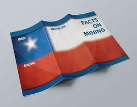 #1 untuk Design a Brochure for Mining in Chile oleh piligasparini