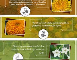 #28 for Infographic about Flowers af W3WEBHELP