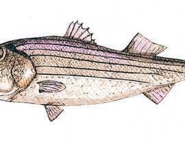 cpyton tarafından Illustrate 3 species of fish to be used for embroidery için no 16