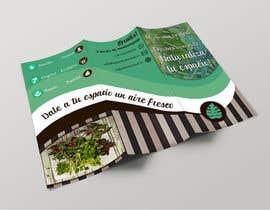 Silvigrassi tarafından Diseñar un folleto için no 25