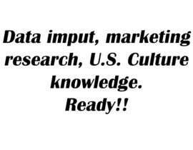 #17 para Data imput, marketing research, U.S. Culture knowledge por skanderbolt