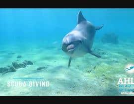 #22 для Создание видео о Подводном плавании от kngbss