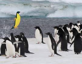 #2 cho Alter penguin image bởi dworker88