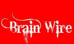 Penyertaan Peraduan #230 untuk Logo Design for brainwire