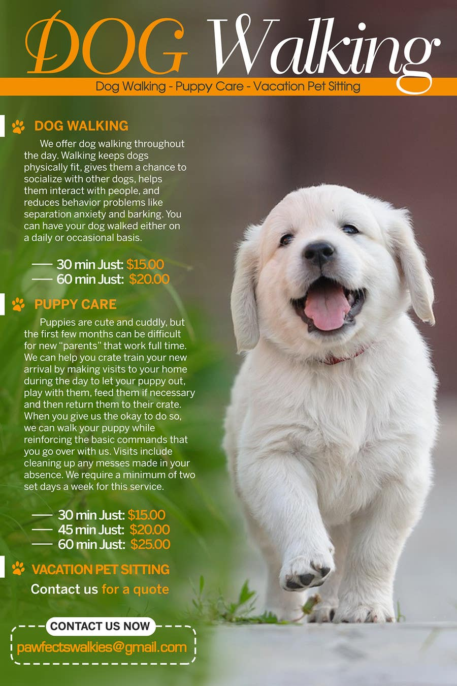 design a flyer for dog walking company lancer 9 for design a flyer for dog walking company by tduongvn