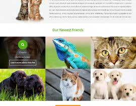 #3 para Design templates Wordpress de TemplateDigitale