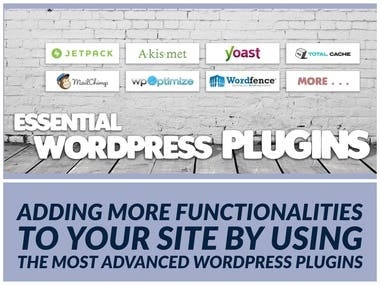 WordPress plugins are great tools for adding and extending functionality to WordPress.  In my work, I will implement the 20+ best WordPress plugins you should have on your WordPress website. These plugins will add awesome functionality to your site and make it 'great'.