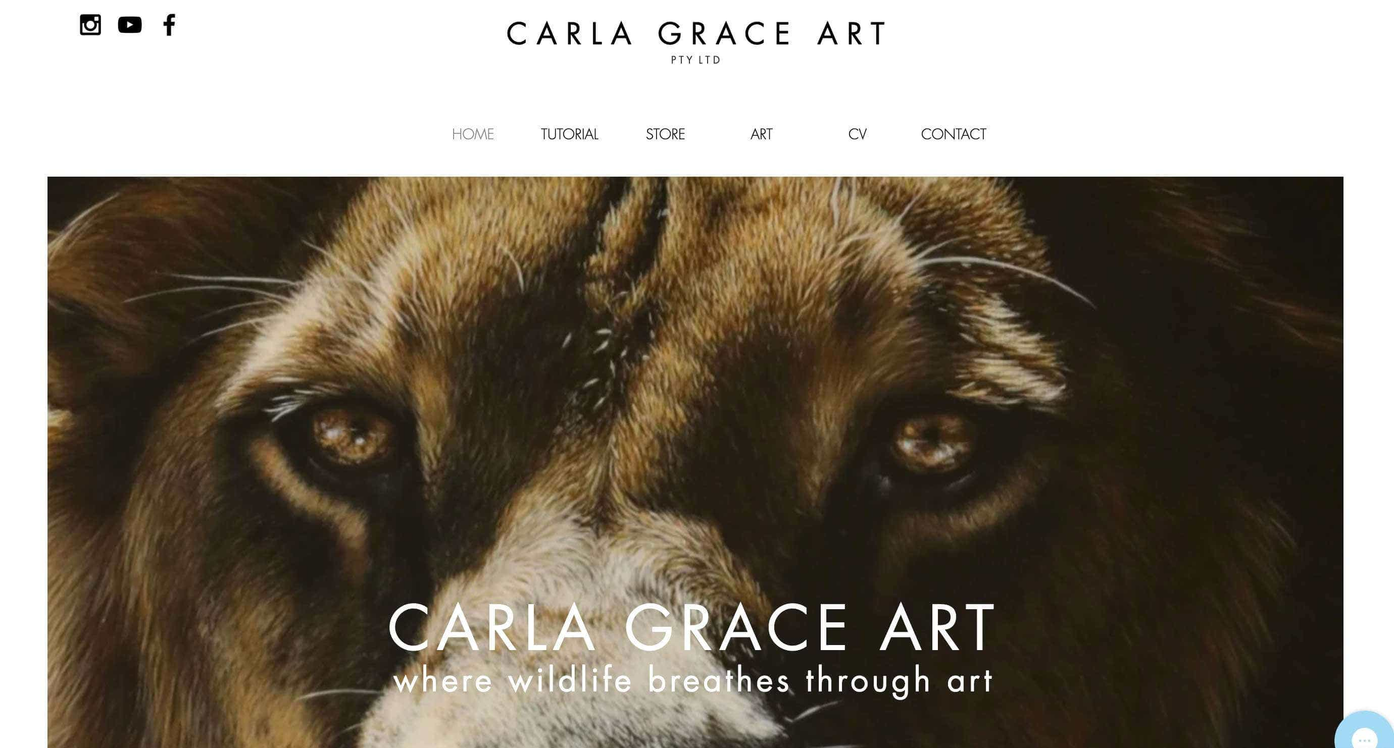 carla grace art wix design