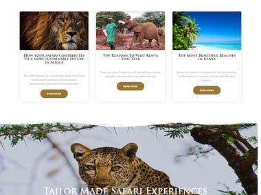 I have developed this website in WordPress. This has more than 30 attractive custom design pages. I have used tourizto theme for this website. We are using elementor page builder to build pages. This has booking option also.  URL: https://www.utopialuxury.travel/