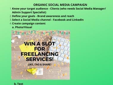 Organic Social Media Campaign