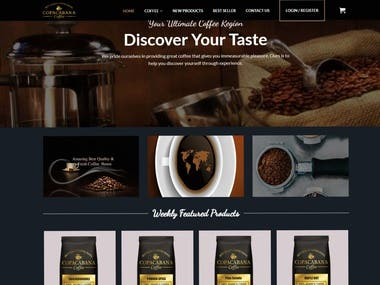 I will make a professional-looking responsive online store for you in budget price.