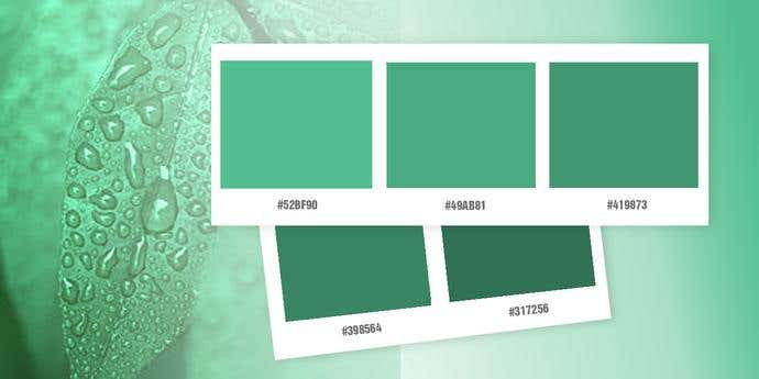 Green Logo Color Palette