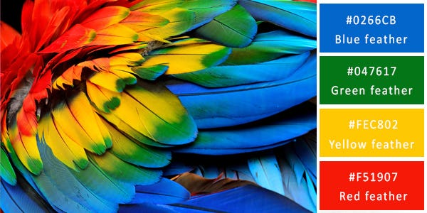 120 Stunning Color Combinations For Your Next Design - Image 26