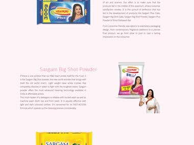 Website design for a Detergent Manufacturing Company
