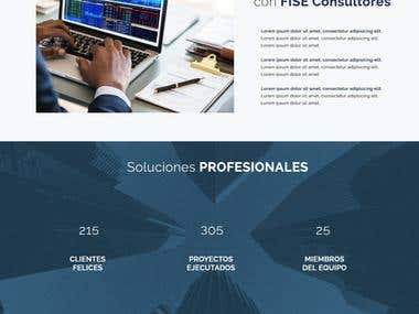 Website designed for specialized consulting company.
