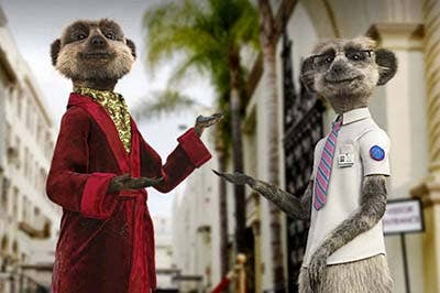 compare the market meerkats 3d graphic design